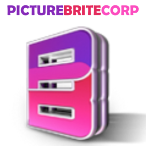 picture brite corp adult toys