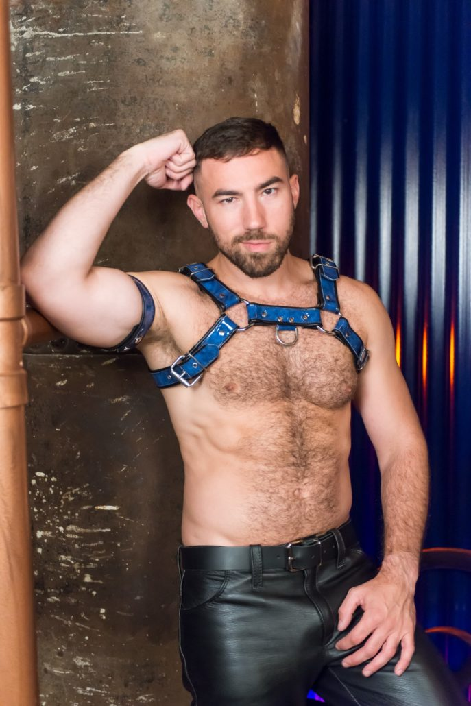 Bulldog leather buckle chest harness
