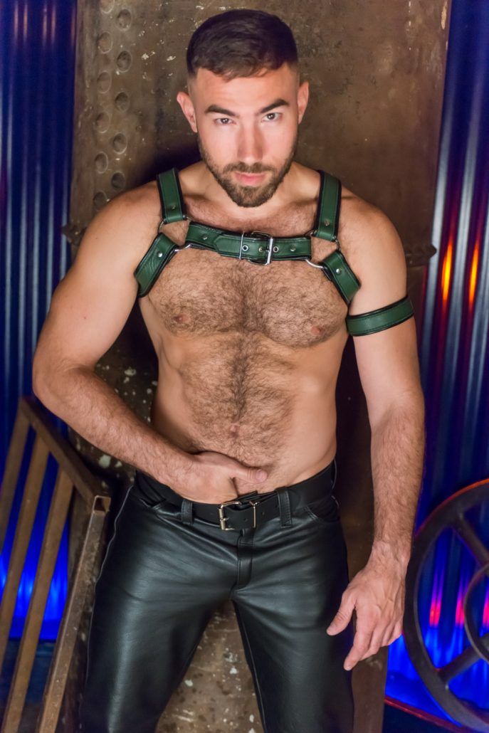 Fred leather chest harness