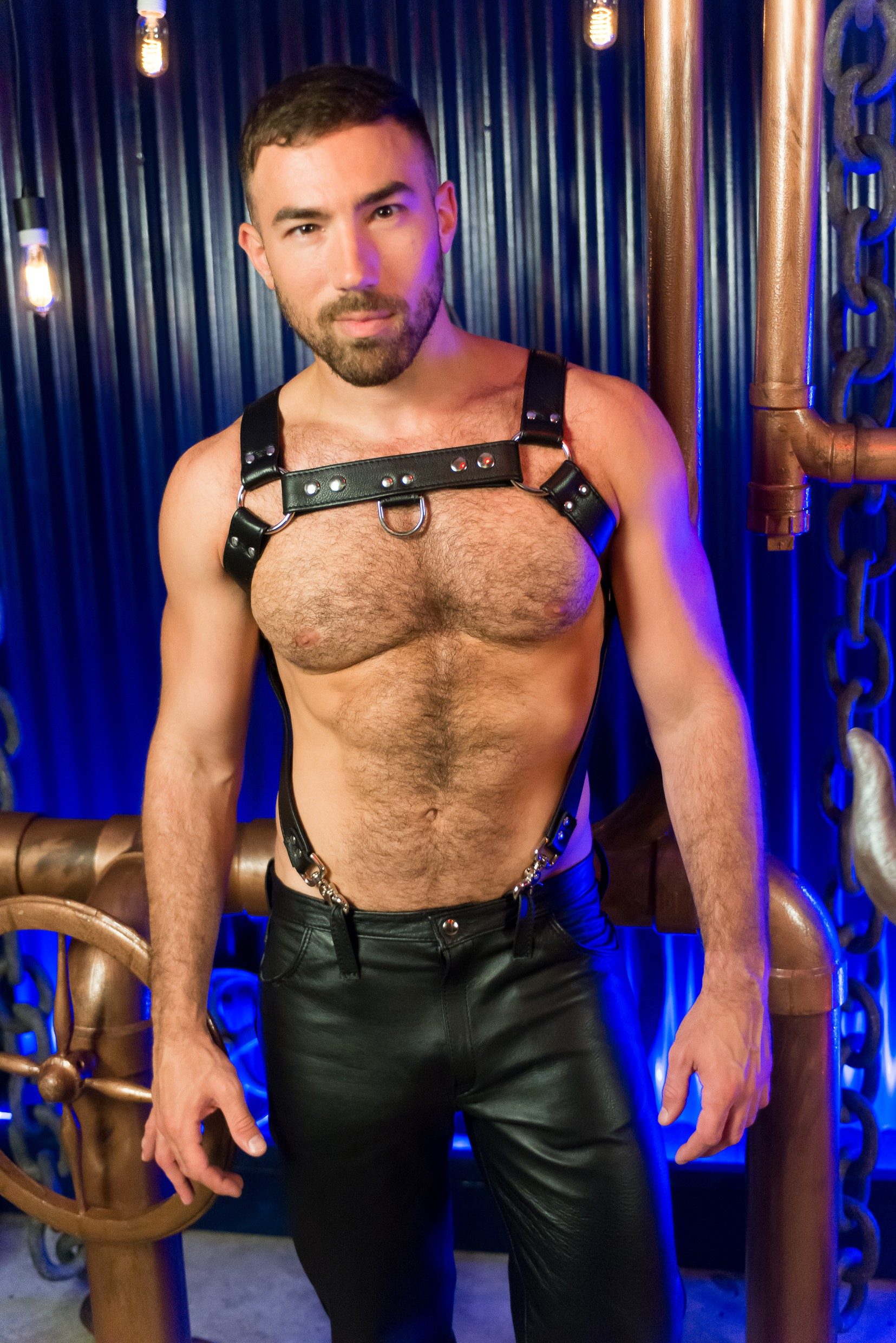 Walter leather chest harness