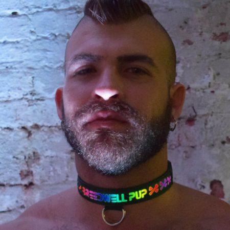 Breedwell Glow Pup Collar
