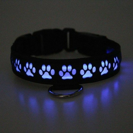 Glow Pup Collar PURPLE SETTING