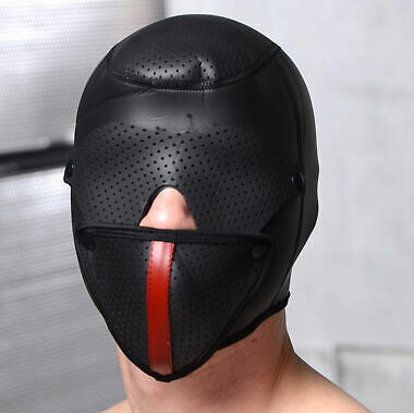 Master Series Scorpion Hood with Removable Blindfold and Face Mask model
